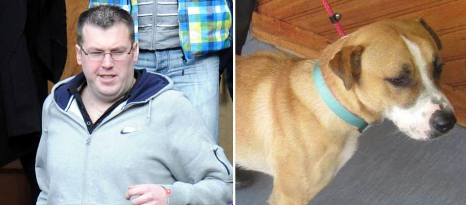 Thế giới: Giết chó có thể phải ngồi tù 5 năm - 5