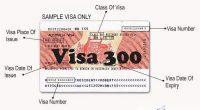 visa-300
