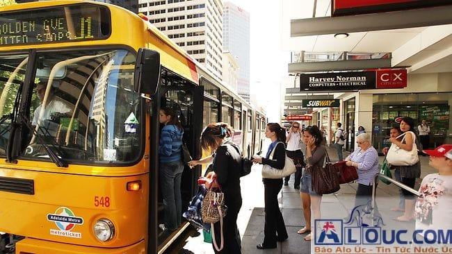 Hệ thống giao thông của Sydney khá hiện đại. Train thì gần như chính xác giờ chạy, bus thì thỉnh thoảng trễ vì tắc đường. Bạn có thể check giờ, chuyến train và bus thông qua app TripViewLite để chủ động trong việc đi lại.