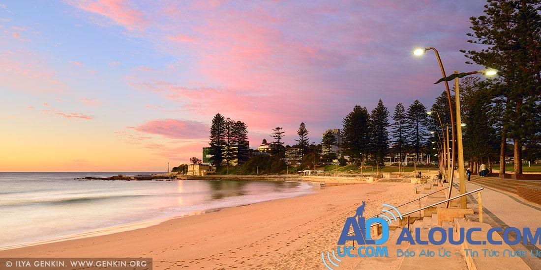 au-dee-why-beach-0001_l