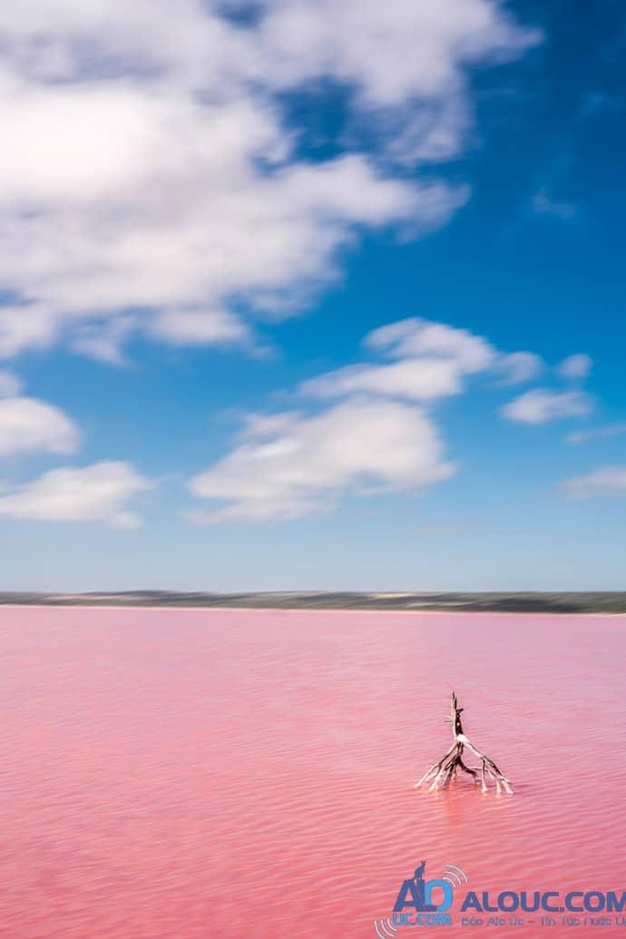 Biển hồng lãng mạn ở Úc khiến chị em mê mẩn - 3