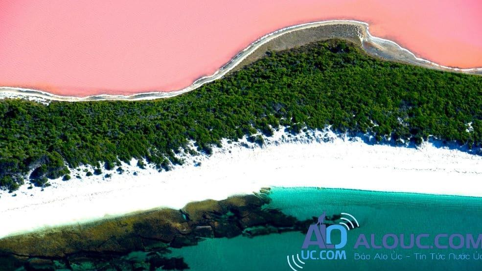 Biển hồng lãng mạn ở Úc khiến chị em mê mẩn - 10