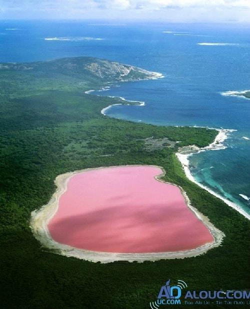 Biển hồng lãng mạn ở Úc khiến chị em mê mẩn - 7