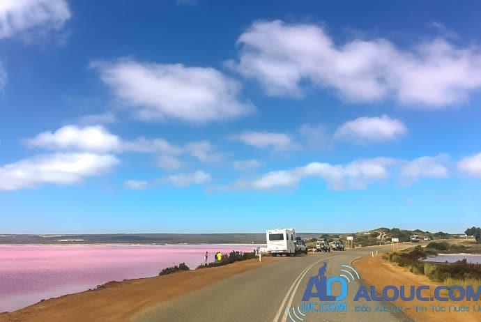 Biển hồng lãng mạn ở Úc khiến chị em mê mẩn - 11