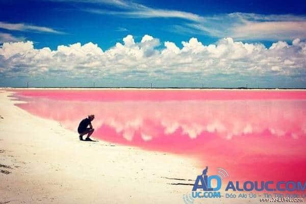 Biển hồng lãng mạn ở Úc khiến chị em mê mẩn - 12