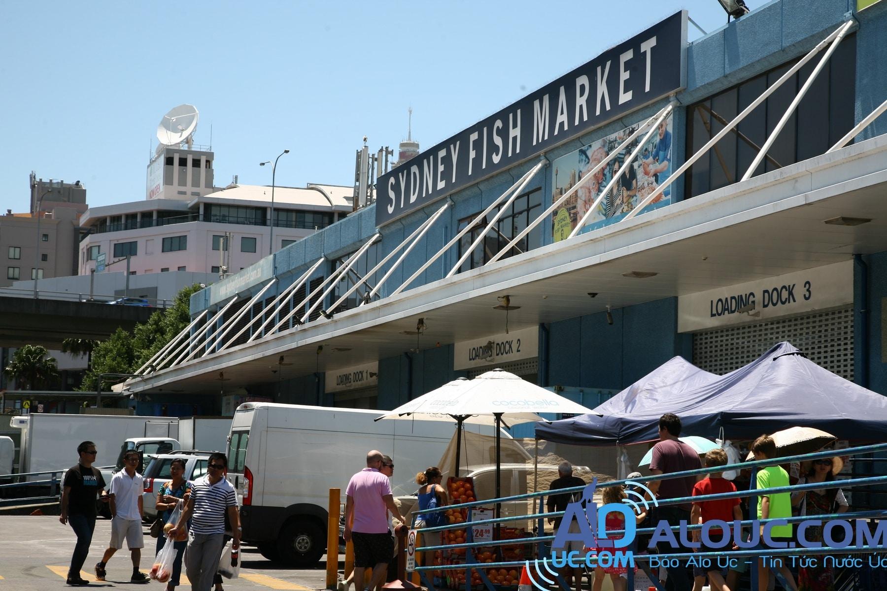Kết quả hình ảnh cho chợ cá ở úc