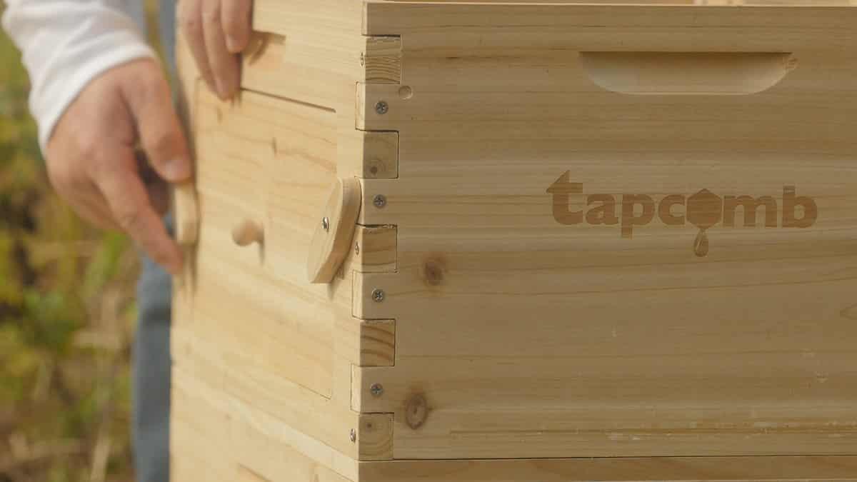 Kết quả hình ảnh cho Tapcomb