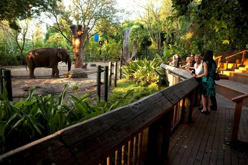 Kết quả hình ảnh cho Zoo perth