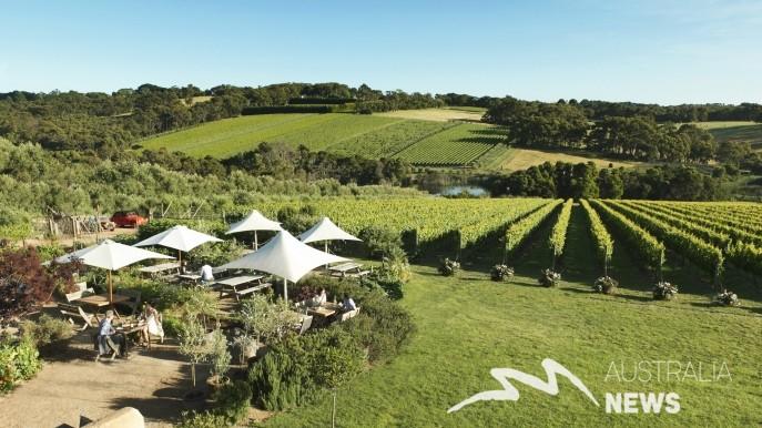Những trải nghiệm đồ ăn và rượu tuyệt nhất mà bạn nên thử ở Victoria