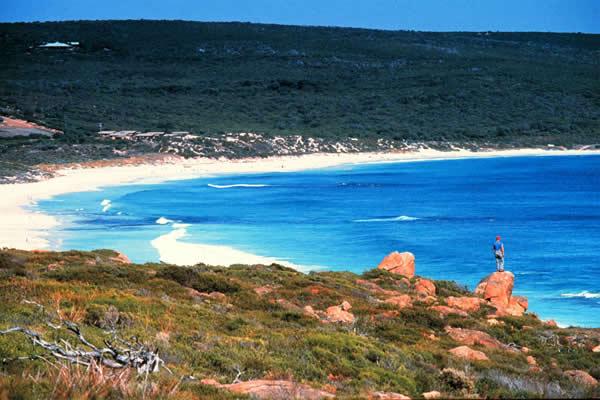 Kết quả hình ảnh cho Smiths beach australia