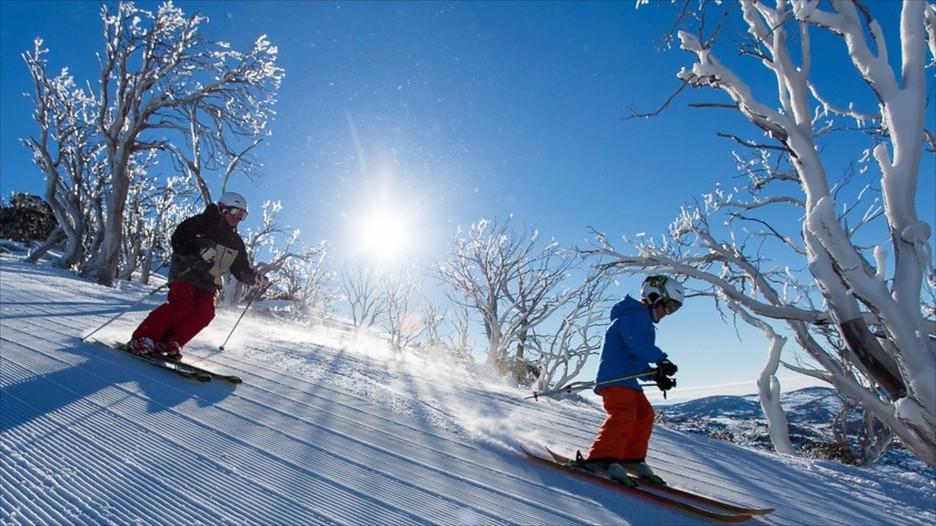 Kết quả hình ảnh cho Snowy Mountains, NSW
