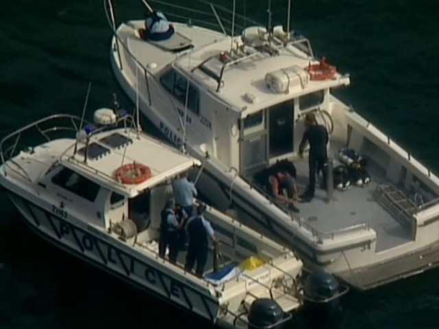 Máy bay rơi ở Sydney trước giờ đón Giao thừa - Ảnh 2.