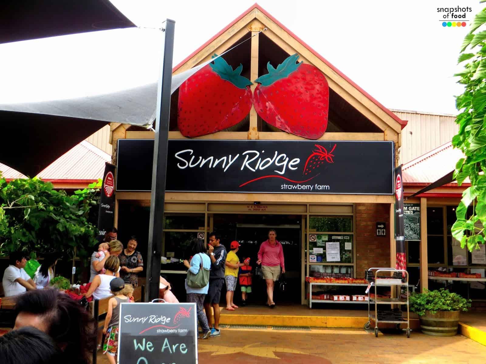 Kết quả hình ảnh cho Sunny Ridge Strawberry melbourne