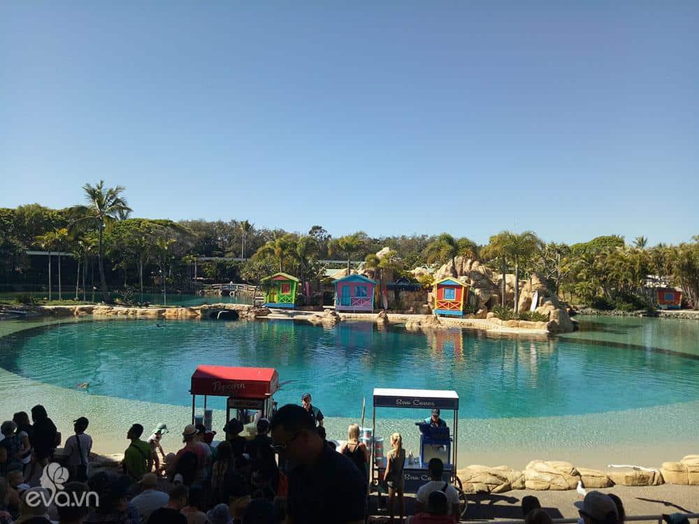 Dạo chơi 2 công viên giải trí cực xịn ở Gold Coast - Úc - 10