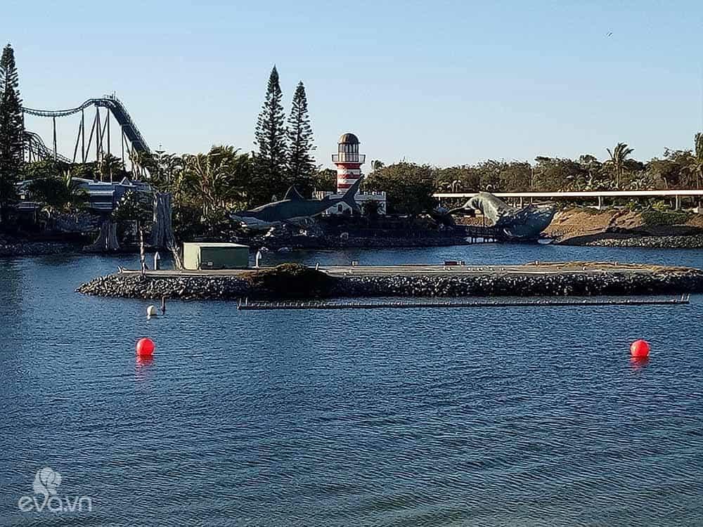 Dạo chơi 2 công viên giải trí cực xịn ở Gold Coast - Úc - 15