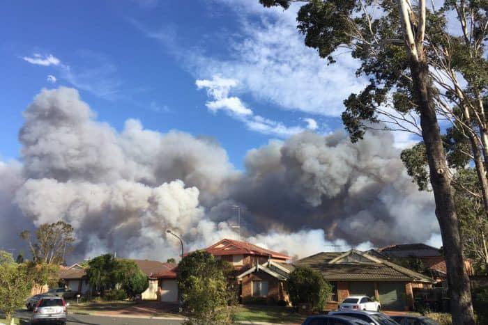 Cháy dữ dội hơn 25.000 ha rừng ở Úc - Ảnh 3.