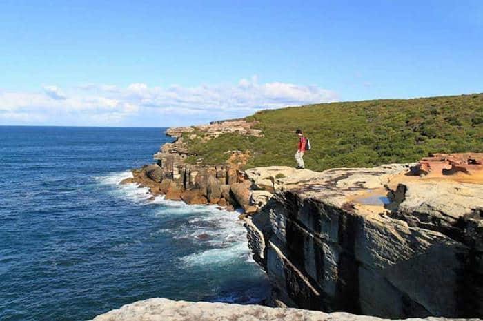 Royal National Park cliffwalk