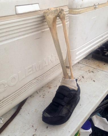 Bí ẩn 14 chân người đi giày lần lượt dạt vào bờ biển Canada - 2