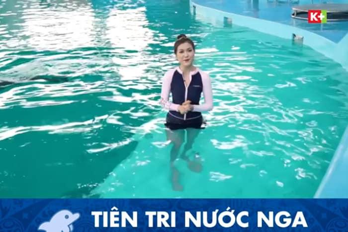Một kênh truyền hình ở Việt Nam đưa MC mặc bikini dẫn World Cup - Ảnh 4.