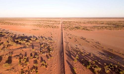 Hàng rào chia sa mạcStrzelecki thành hai nửa có cảnh quan khác nhau. Ảnh:IFL Science.