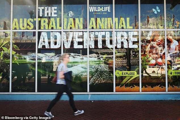 Một vườn thú ở Úc cho phép khách tham quan lấy tên người yêu cũ đặt cho rắn - Ảnh 2.