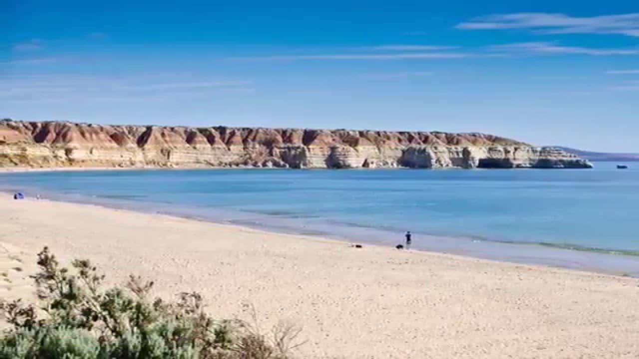Maslin Beach