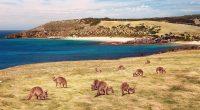 Tới những hẻo lánh một mình - Điều bạn không nên làm ở Úc