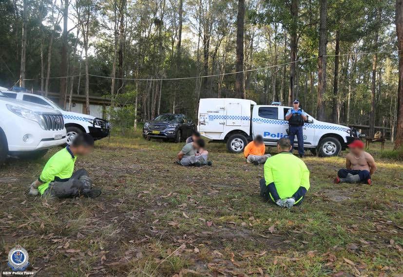 Australia bắt 14 người Việt, tịch thu hơn 13.000 cây cần sa - 1